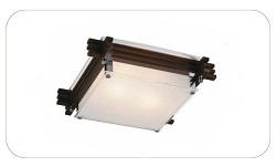 Настенно-потолочны светильники